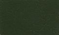 Juniper Green CD2 12B29